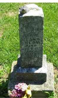 INLOW, FANNIE - Adams County, Ohio   FANNIE INLOW - Ohio Gravestone Photos