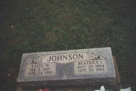 JOHNSON, ESTEL HUGH - Adams County, Ohio | ESTEL HUGH JOHNSON - Ohio Gravestone Photos