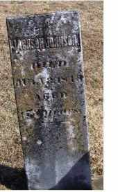JOHNSON, JACKSON - Adams County, Ohio | JACKSON JOHNSON - Ohio Gravestone Photos