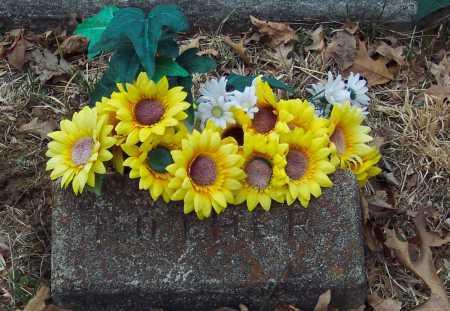 GREEN KILLEN, ELIZA JANE - Adams County, Ohio | ELIZA JANE GREEN KILLEN - Ohio Gravestone Photos