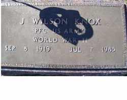 KNOX, J. WILSON - Adams County, Ohio | J. WILSON KNOX - Ohio Gravestone Photos