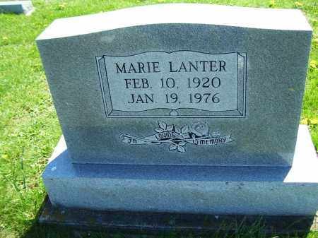 LANTER, MARIE - Adams County, Ohio | MARIE LANTER - Ohio Gravestone Photos