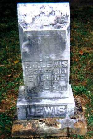 LEWIS, EMELINE - Adams County, Ohio | EMELINE LEWIS - Ohio Gravestone Photos