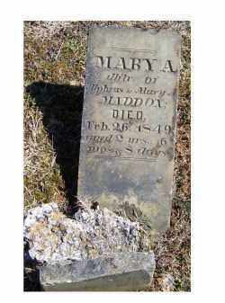 MADDOX, MARY A. - Adams County, Ohio   MARY A. MADDOX - Ohio Gravestone Photos