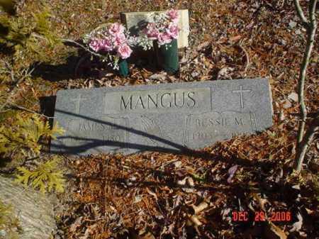 MANGUS, JAMES M. - Adams County, Ohio | JAMES M. MANGUS - Ohio Gravestone Photos