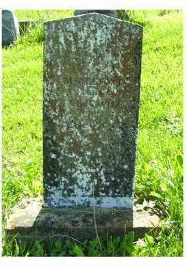 MCCREIGHT, JOSEPH - Adams County, Ohio   JOSEPH MCCREIGHT - Ohio Gravestone Photos
