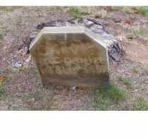 MCDANIEL, CARVIE - Adams County, Ohio | CARVIE MCDANIEL - Ohio Gravestone Photos