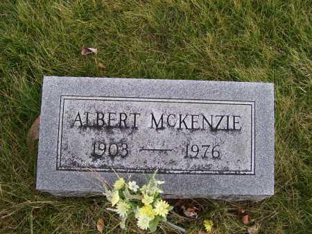 MCKENZIE, ALBERT - Adams County, Ohio   ALBERT MCKENZIE - Ohio Gravestone Photos
