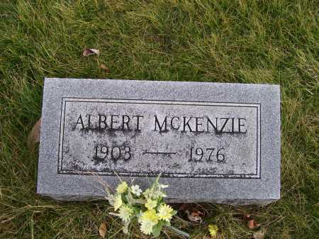 MCKENZIE, ALBERT - Adams County, Ohio | ALBERT MCKENZIE - Ohio Gravestone Photos