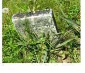 MCNEIL, SARAH M. - Adams County, Ohio   SARAH M. MCNEIL - Ohio Gravestone Photos