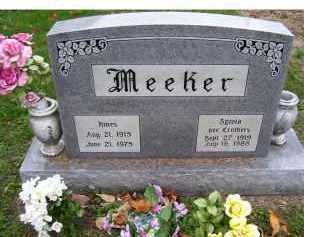 MEEKER, HINES - Adams County, Ohio | HINES MEEKER - Ohio Gravestone Photos