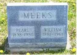MEEKS, WILLIAM - Adams County, Ohio | WILLIAM MEEKS - Ohio Gravestone Photos