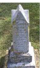 MOORE, CLARENCE OLIN - Adams County, Ohio   CLARENCE OLIN MOORE - Ohio Gravestone Photos