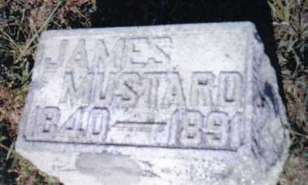 MUSTARD, JAMES - Adams County, Ohio | JAMES MUSTARD - Ohio Gravestone Photos