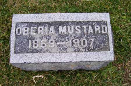 MUSTARD, OBERIA - Adams County, Ohio | OBERIA MUSTARD - Ohio Gravestone Photos