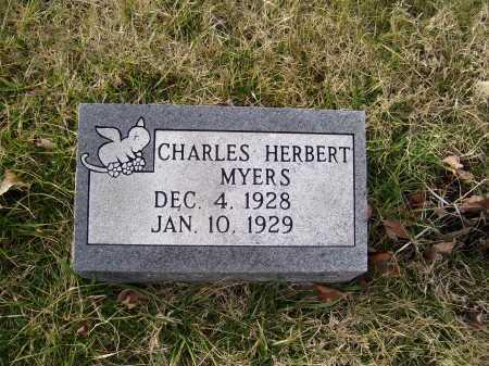 MYERS, CHARLES HERBERT - Adams County, Ohio | CHARLES HERBERT MYERS - Ohio Gravestone Photos