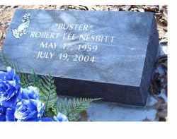 NESBITT, ROBERT LEE - Adams County, Ohio | ROBERT LEE NESBITT - Ohio Gravestone Photos