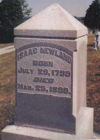 NEWLAND, ISAAC - Adams County, Ohio | ISAAC NEWLAND - Ohio Gravestone Photos