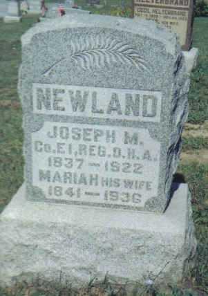 NEWLAND, JOSEPH M. - Adams County, Ohio   JOSEPH M. NEWLAND - Ohio Gravestone Photos