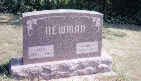 NEWMAN, CHARLES - Adams County, Ohio | CHARLES NEWMAN - Ohio Gravestone Photos