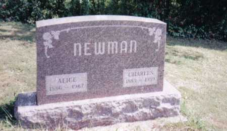 WARD NEWMAN, ALICE - Adams County, Ohio | ALICE WARD NEWMAN - Ohio Gravestone Photos