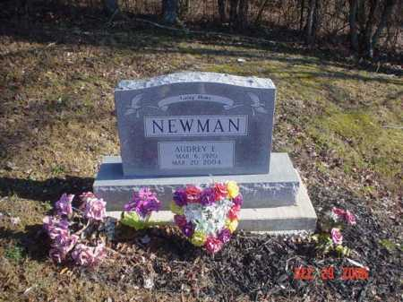 NEWMAN, AUDREY E. - Adams County, Ohio | AUDREY E. NEWMAN - Ohio Gravestone Photos