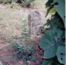 NEWMAN, CHARLEY L. - Adams County, Ohio | CHARLEY L. NEWMAN - Ohio Gravestone Photos