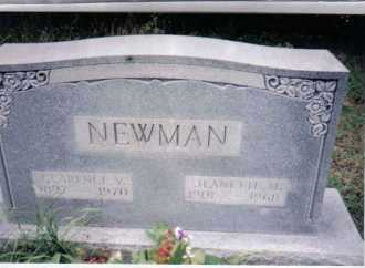NEWMAN, CLARENCE V. - Adams County, Ohio | CLARENCE V. NEWMAN - Ohio Gravestone Photos