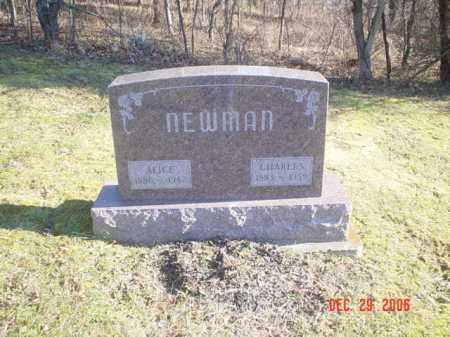 NEWMAN, ALICE - Adams County, Ohio | ALICE NEWMAN - Ohio Gravestone Photos