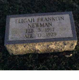 NEWMAN, ELIGAH FRANKLIN - Adams County, Ohio | ELIGAH FRANKLIN NEWMAN - Ohio Gravestone Photos