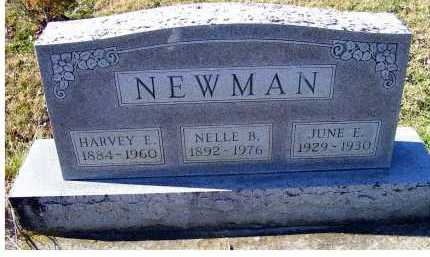 NEWMAN, HARVEY E. - Adams County, Ohio | HARVEY E. NEWMAN - Ohio Gravestone Photos