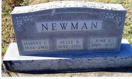 NEWMAN, NELLE B. - Adams County, Ohio | NELLE B. NEWMAN - Ohio Gravestone Photos
