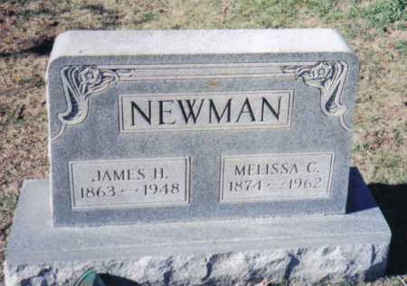 NEWMAN, JAMES H. - Adams County, Ohio | JAMES H. NEWMAN - Ohio Gravestone Photos