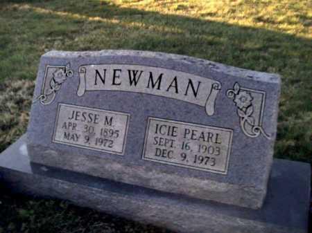 NEWMAN, JESSE M. - Adams County, Ohio | JESSE M. NEWMAN - Ohio Gravestone Photos