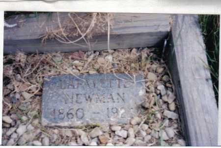 NEWMAN, LAFAYETTE - Adams County, Ohio   LAFAYETTE NEWMAN - Ohio Gravestone Photos