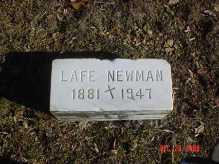 NEWMAN, LAFE - Adams County, Ohio   LAFE NEWMAN - Ohio Gravestone Photos