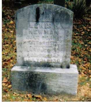 NEWMAN, LEWIS H. - Adams County, Ohio | LEWIS H. NEWMAN - Ohio Gravestone Photos