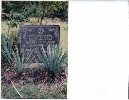 NEWMAN, MASHECH H. - Adams County, Ohio | MASHECH H. NEWMAN - Ohio Gravestone Photos