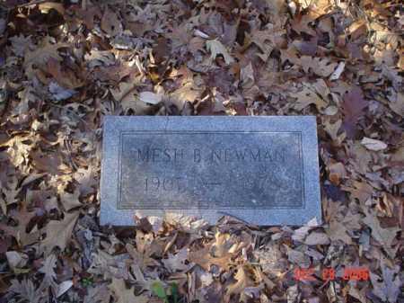 NEWMAN, MESH B. - Adams County, Ohio   MESH B. NEWMAN - Ohio Gravestone Photos