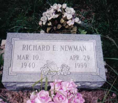 NEWMAN, RICHARD E. - Adams County, Ohio | RICHARD E. NEWMAN - Ohio Gravestone Photos