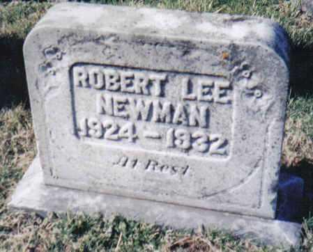 NEWMAN, ROBERT LEE - Adams County, Ohio   ROBERT LEE NEWMAN - Ohio Gravestone Photos