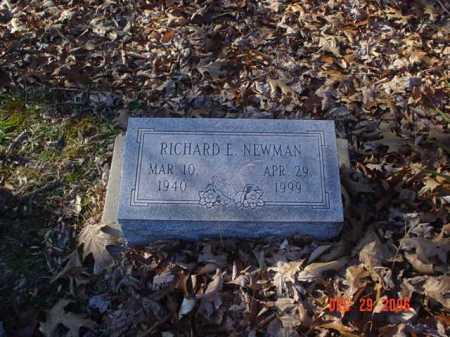 NEWMAN, RICHARD - Adams County, Ohio | RICHARD NEWMAN - Ohio Gravestone Photos