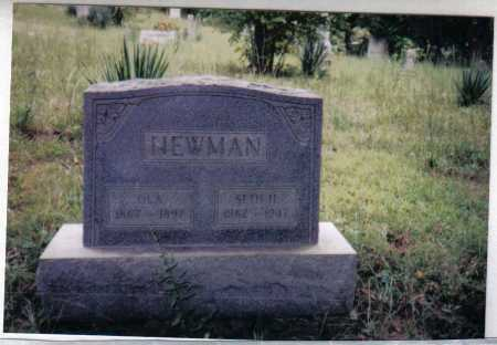 JOHNSON NEWMAN, OLA - Adams County, Ohio | OLA JOHNSON NEWMAN - Ohio Gravestone Photos