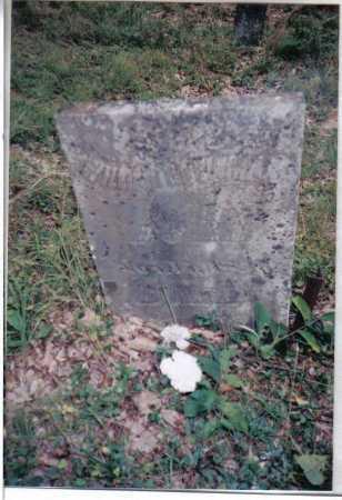 NEWMAN, WILLIAM - Adams County, Ohio | WILLIAM NEWMAN - Ohio Gravestone Photos
