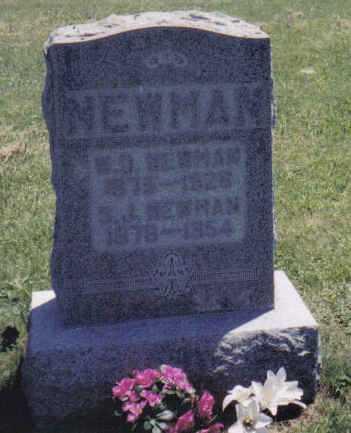 NEWMAN, W.D. - Adams County, Ohio | W.D. NEWMAN - Ohio Gravestone Photos