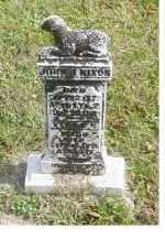 NIXON, VERDA G. - Adams County, Ohio   VERDA G. NIXON - Ohio Gravestone Photos