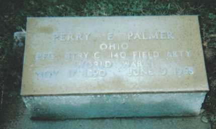 PALMER, PERRY E. - Adams County, Ohio | PERRY E. PALMER - Ohio Gravestone Photos