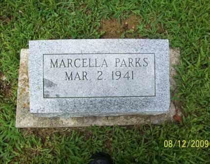 PARKS, MARCELLA - Adams County, Ohio | MARCELLA PARKS - Ohio Gravestone Photos