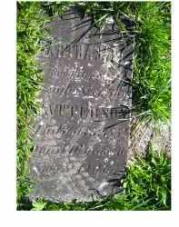PATTERSON, MARTHA JANE - Adams County, Ohio | MARTHA JANE PATTERSON - Ohio Gravestone Photos