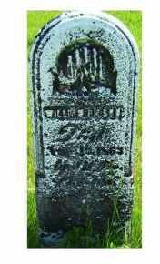 PILSON, WILLIAM - Adams County, Ohio   WILLIAM PILSON - Ohio Gravestone Photos